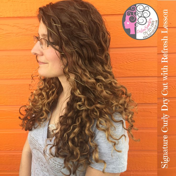 Naturally Curly Grown Out Balayage Highlights Bronde Hair