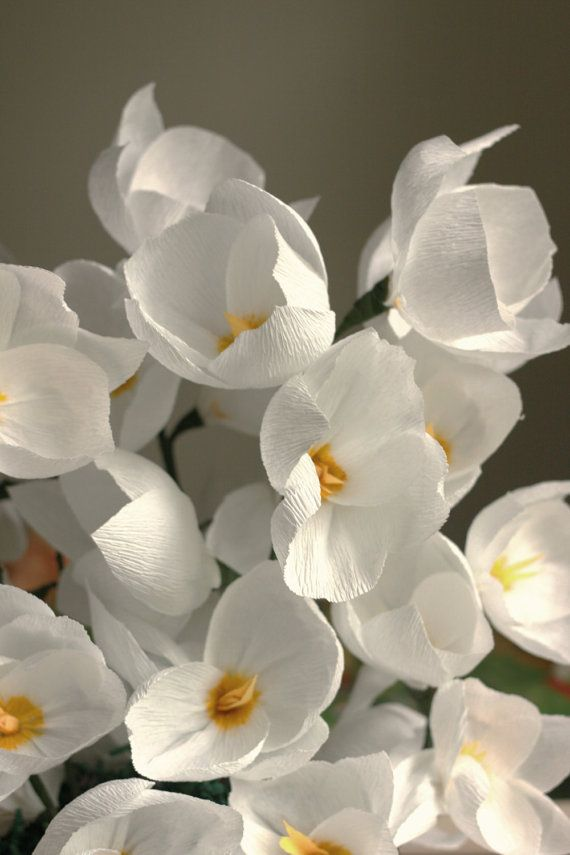 Best ideas about winter bridal bouquets on pinterest