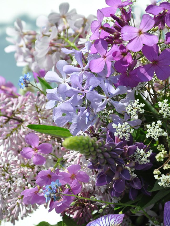 Hanging Flower Baskets Spokane : Ideas to try about flowers gardens containers