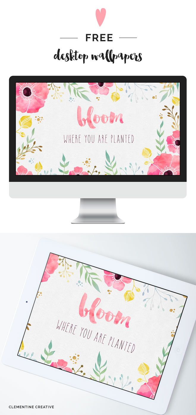 Free Desktop Wallpaper - Bloom Where you are Planted - Clementine Creative | DIY Printable Stationery