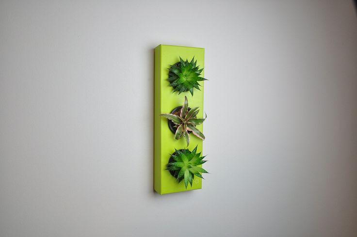 https://flowerbox.com.tr/urun/208/k-pot-3