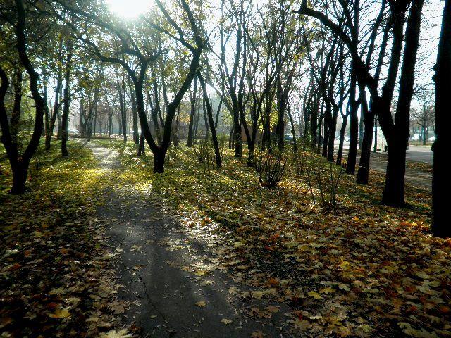 Полдня до зимы: oksanasemenova