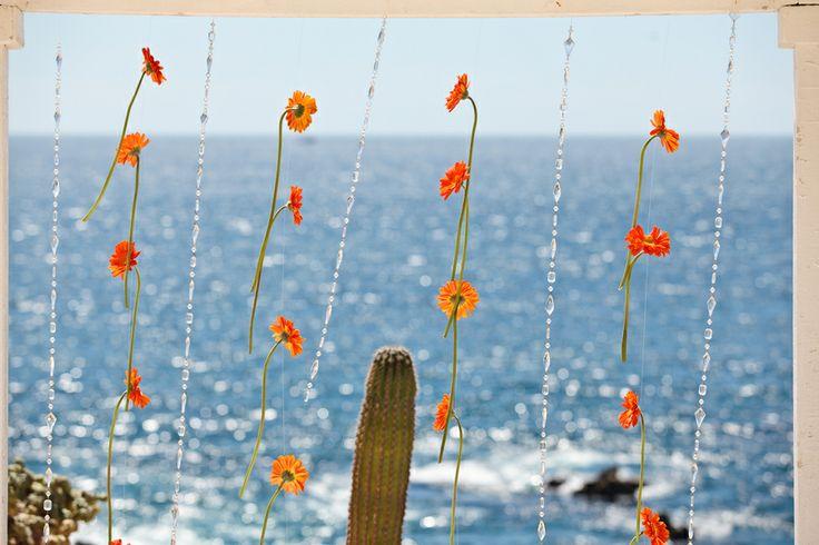 orange gerbera daisy chains for the altar | Beach destination wedding