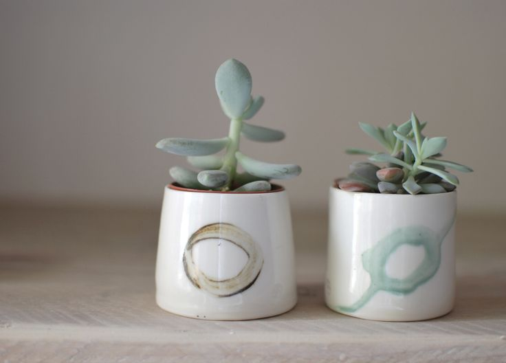 Thrown Porcelain Beakers for Succulents: #handmade #porcelain #ceramics #ceramic #succulents # plants #green www.inkclay.com