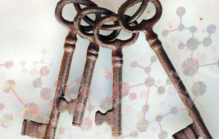 4 nycklar till ett friskare liv