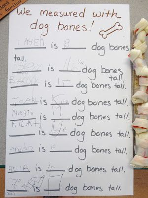 Non standard units of measurement! Measuring with dog bones!!!