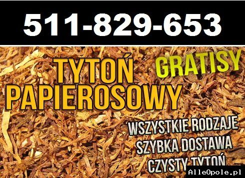 Tani tytoń sklepowa jakość! Promocja! 65zl/kg Viceroy RGD Camel Marlboro i wiele więcej (bytom) http://www.alleopole.pl/
