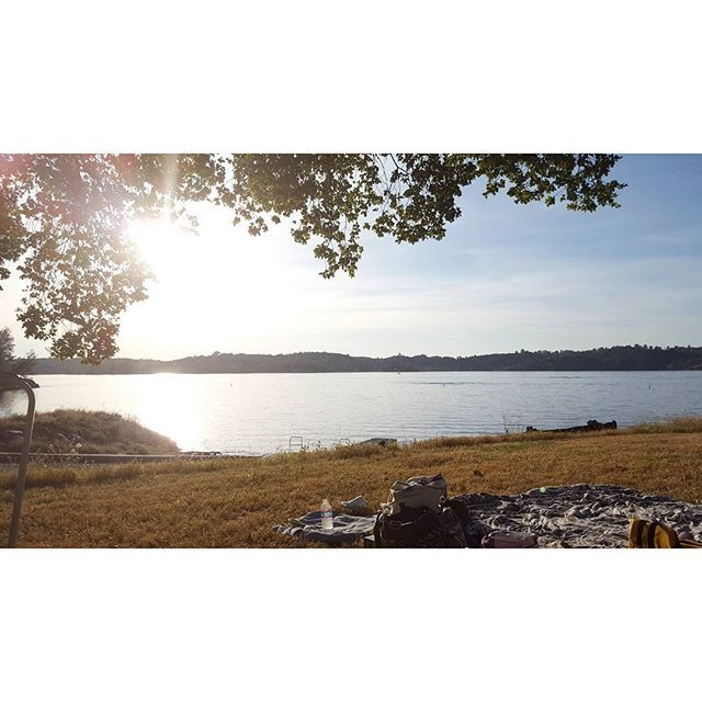 California National, State, Regional & Local Parks - CaliParks : Folsom Lake State Recreation Area