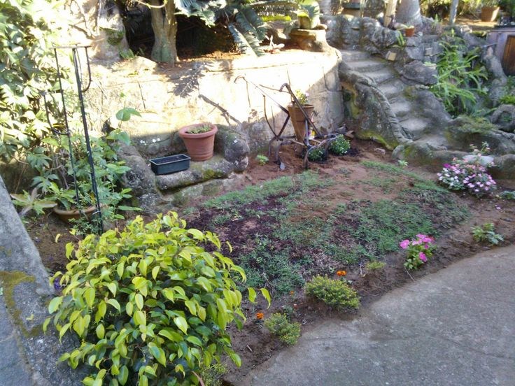 little garden with farming implement