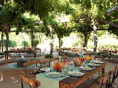 Campovida And Other Beautiful Hopland Wedding Venues Read Detailed Info On Sonoma Wine Country Reception Locations