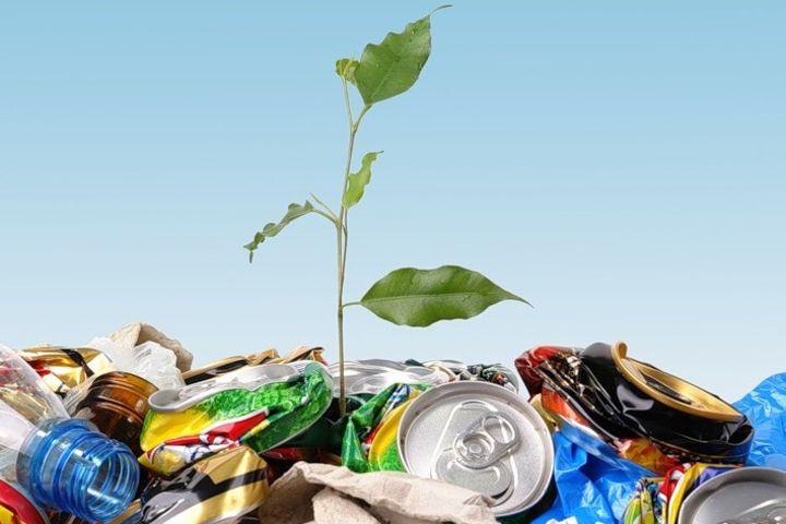 Новости Коломны   В городе разработана программа Экология и окружающая среда Фото (Коломна)