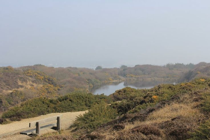 Hengistbury Head in Dorset...a walk here will blow the cobwebs away!