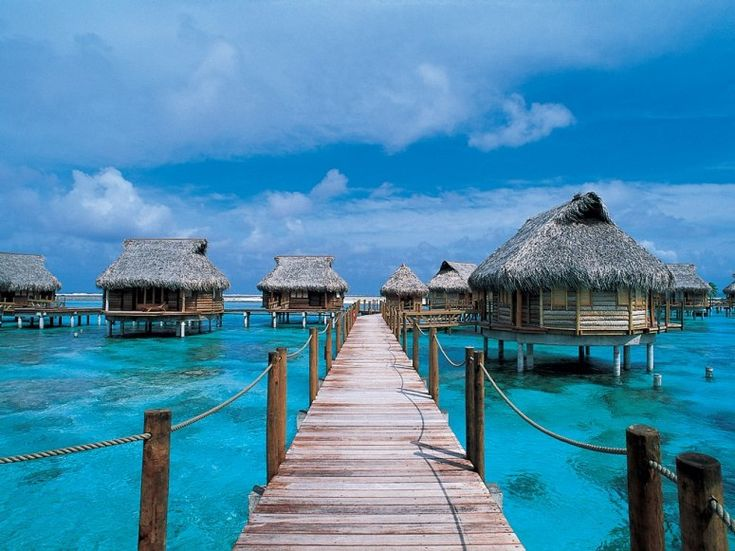 Polar Vortex: 20 Warm Places You'd Rather Be When the Deep Freeze Hits...watching fish swim by your overwater bungalow in Tikehau, French Polynesia