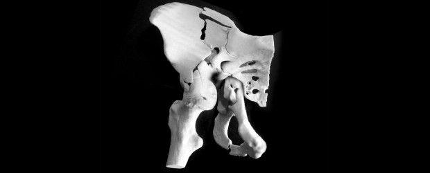 Axial 3D llevará modelos médicos impresos al mercado mundial