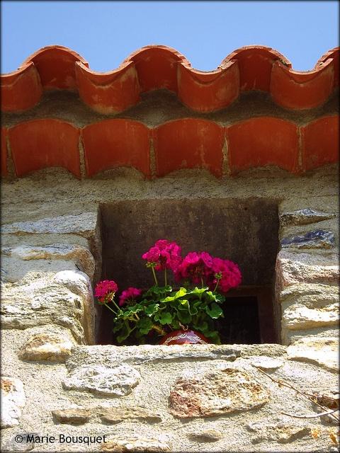 Laroque-des-Albères, Languedoc-Roussillon