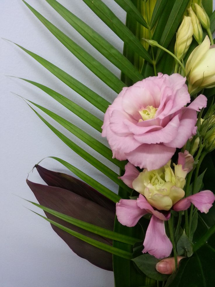 #White centred pink #Lisianthus