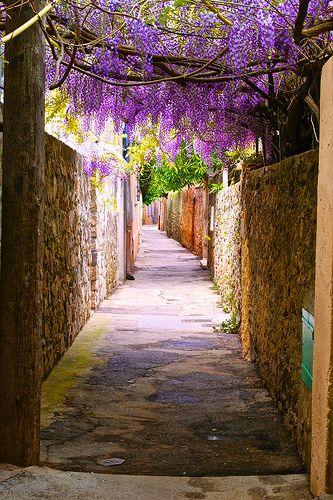 Just walking around   Saint Tropez, France