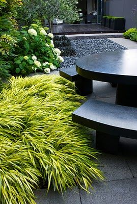 Gorgeous lime green hakonechloa against the grey furniture- love this combo