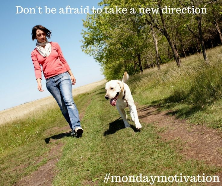 #Mondaymotivation don't be afraid to take a new direction
