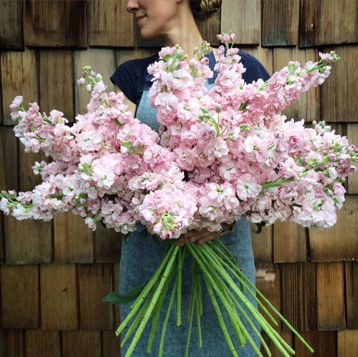 Best Of Flower Bouquet Stock Images