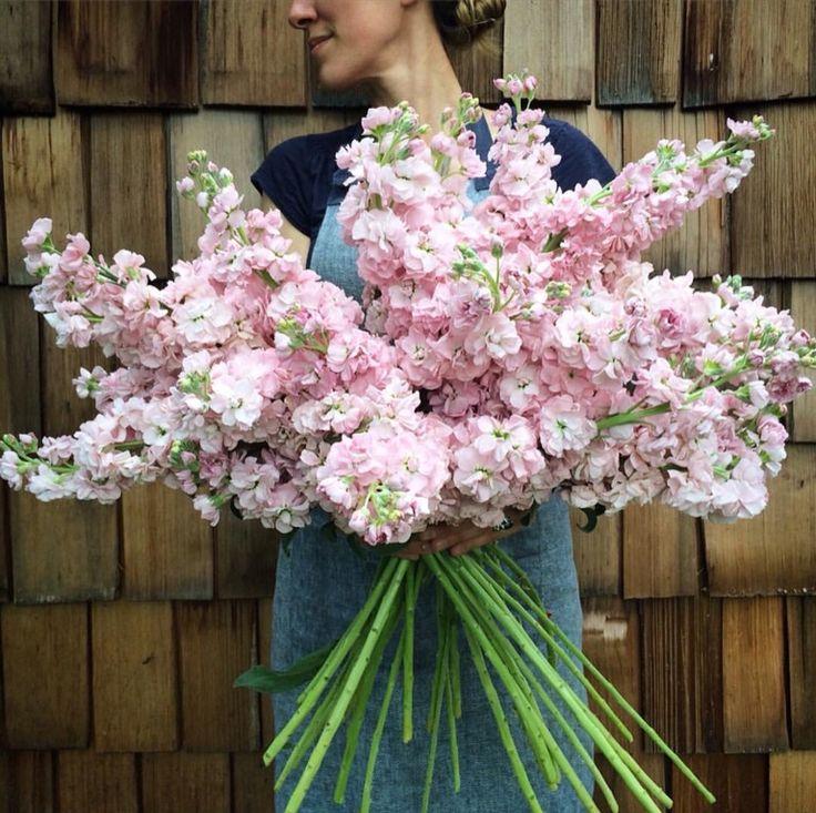 29 best FLOWERS 2017 images on Pinterest | Floral arrangements ...