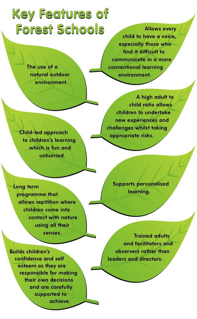 Key features of forest schools.