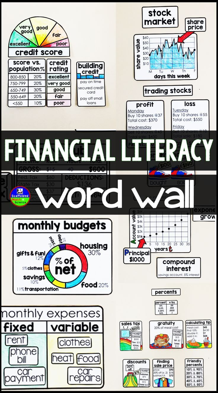 This Financial Literacy Concept And Vocabulary Wall Is Perfect For A Consumer Math Or Personal Finance Class Vo Financial Literacy Finance Class Consumer Math