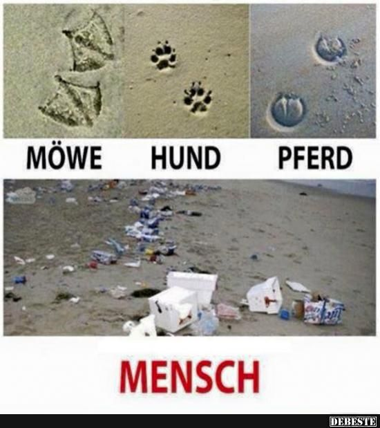 Is was dran