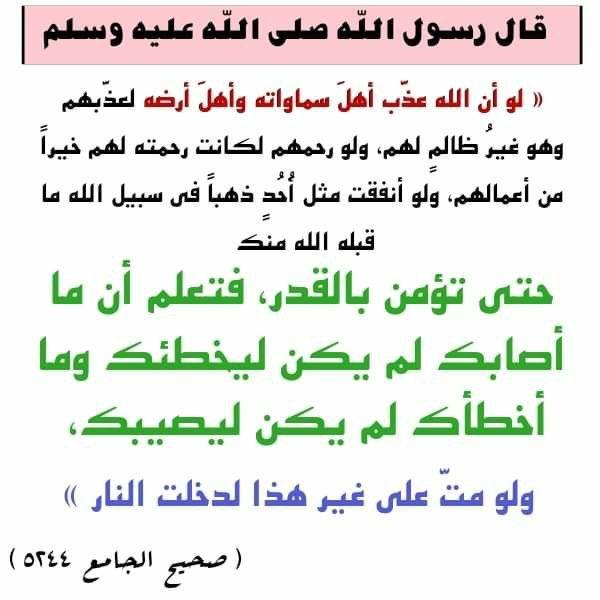 Pin By Abid Houria On صحيح البخاري ومسلم شرح الأحاديث في صفحة الفيس Ahadith Wisdom Hadith