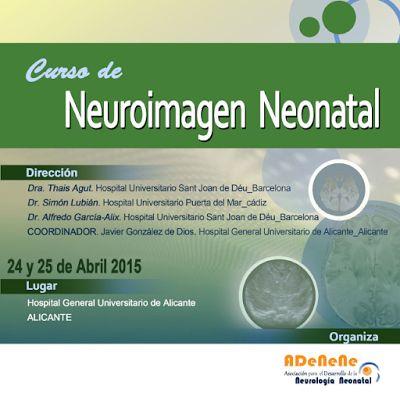 Pediatría Basada en Pruebas: Curso de Neuroimagen Neonatal