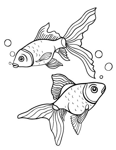 Printable Goldfish Coloring Page Free PDF Download At