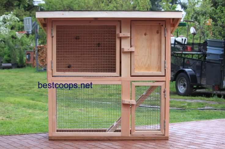 Chicken coop rabbit hutch plans wood pore filler paste for Wood hutch plans