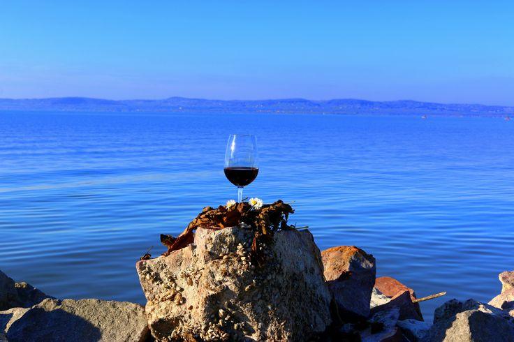 The harmony of wine and Balaton