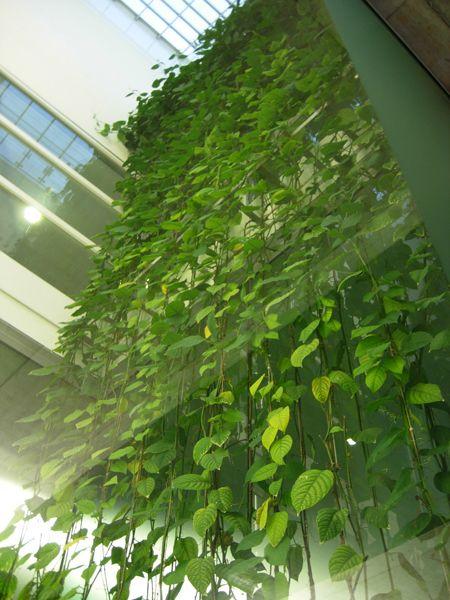 european airport artwork | ... the plants themselves semi hidden so that it…