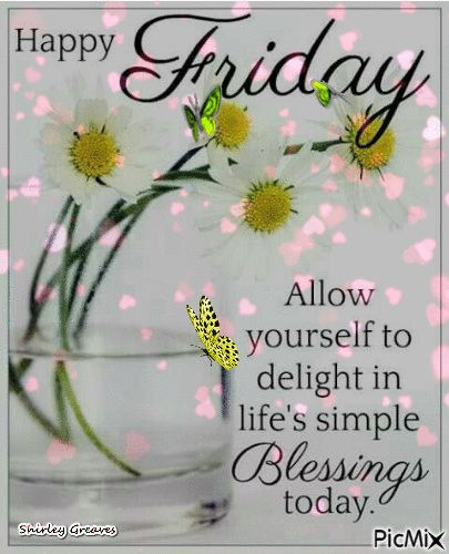 Allow yourself to delight in life's simple blessings today friday friday quo…