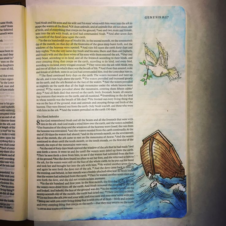 Bible journaling, illustrated faith, Noah's ark, Genesis I need to add the dove to mine