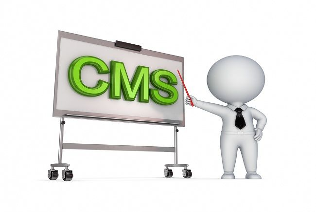 How to Choose CMS for Website Development?