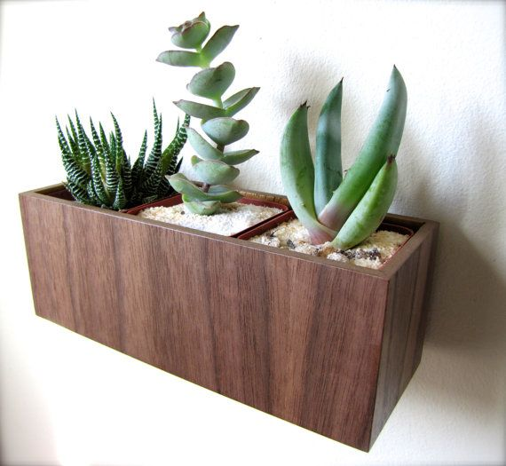 """Wall Hanging Planter (8""""), Plant Holder for Succulents, Cacti or Air Plants in WALNUT wood, roughly 8""""x3""""x3"""", air plants sold separately on Etsy, $28.00"""