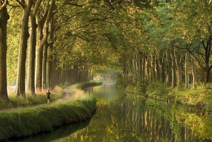 これのためだけに南フランスに寄っても良い「ミディ運河」