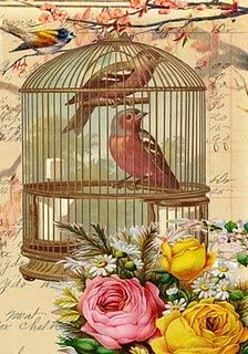 vintage card - 2 birds in a birdcage with roses