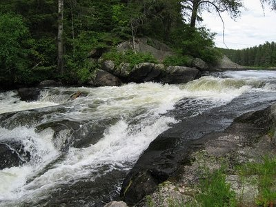 Rushing River Provincial Park near Kenora, Ontario... almost at the Manitoba border. Haven't been here... yet.