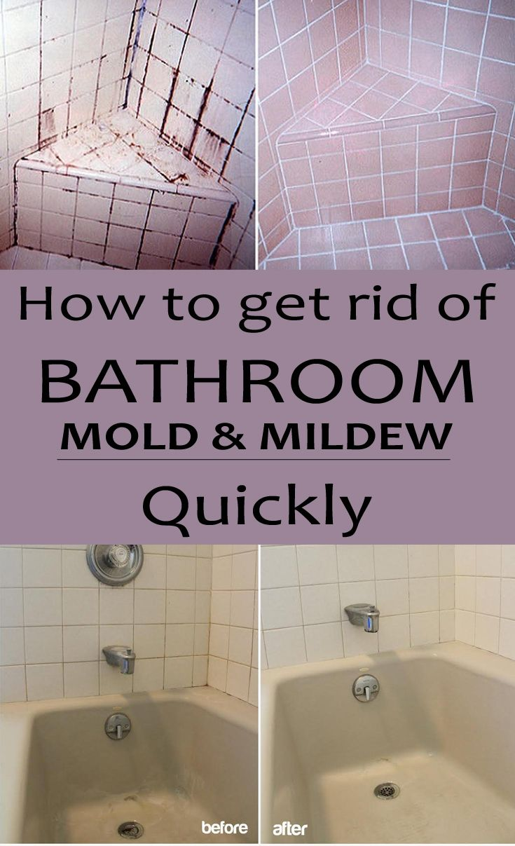 how to get rid of bathroom mold and mildew quickly