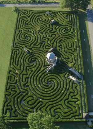 the longleat hedge maze in wiltshire, england