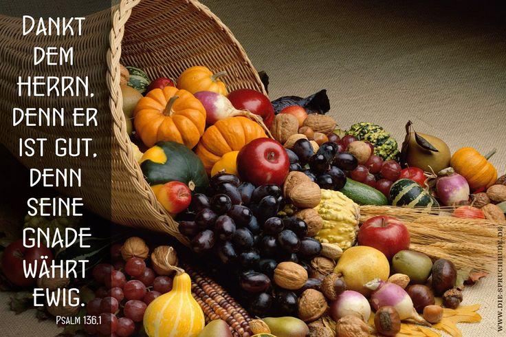 Dankt - Spruchkarte Bibelvers - sortiert nach : Bibelzitate - DIE-SPRUCHBUDE.DE - Spruchkarten Online-Album