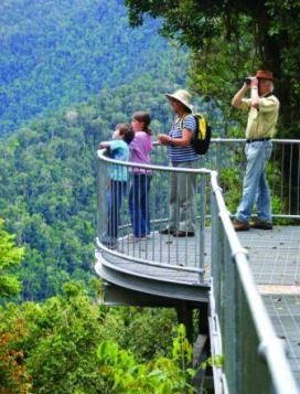 Mamu is a unique way to experience the rainforest from the comfort of an award-winning elevated walkway. #rainforest #elevatedwalk