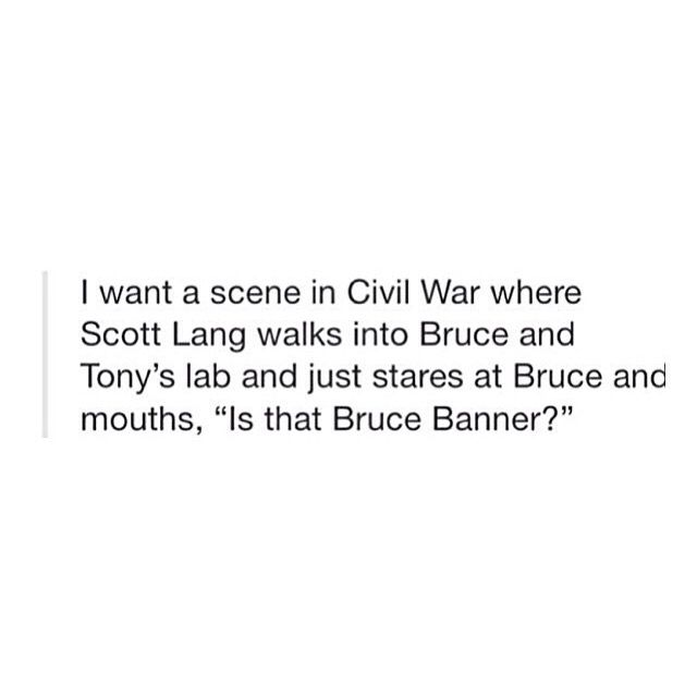 "I want a scene in Civil War where Scott Lang walks into Bruce and Tony's lab and just stares at Bruce and mouths, ""Is that Bruce Banner?"""