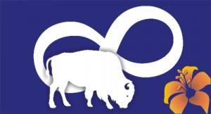 Metis Saskatchewan Flag