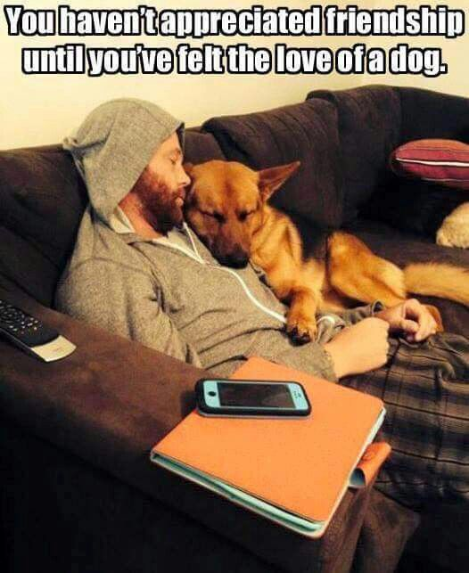 The German Shepherd- I'm just in Awe of this pic. That man's best friend right there!