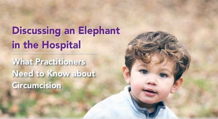 Circumcision: The Elephant in the Hospital - https://bysarlo.com/circumcision-elephant-hospital/