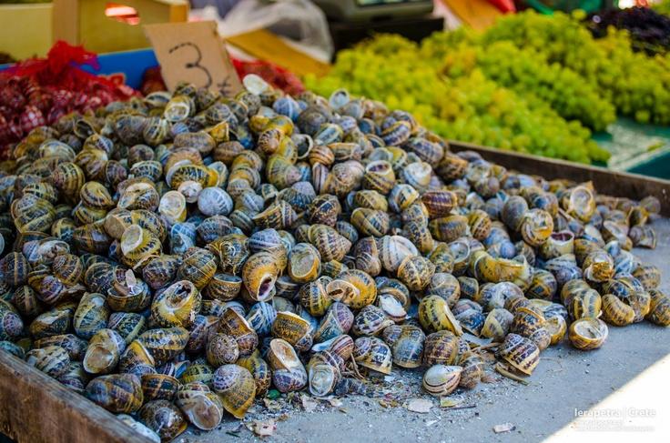 Χοχλιοί (Σαλιγκάρια) !  Snails. Much tastier than their looks !    (CC-BY-SA 3.0)